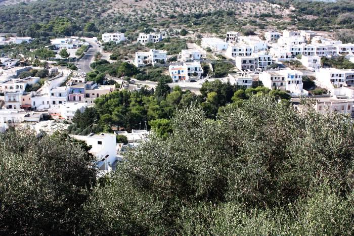 castro-puglia-salento-olive-trees